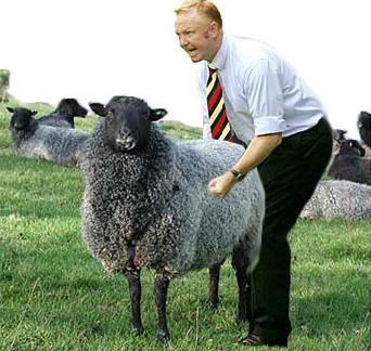 The cops knew he was having sex with the sheep when he pulled his erection ...