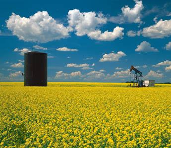 OilWellField