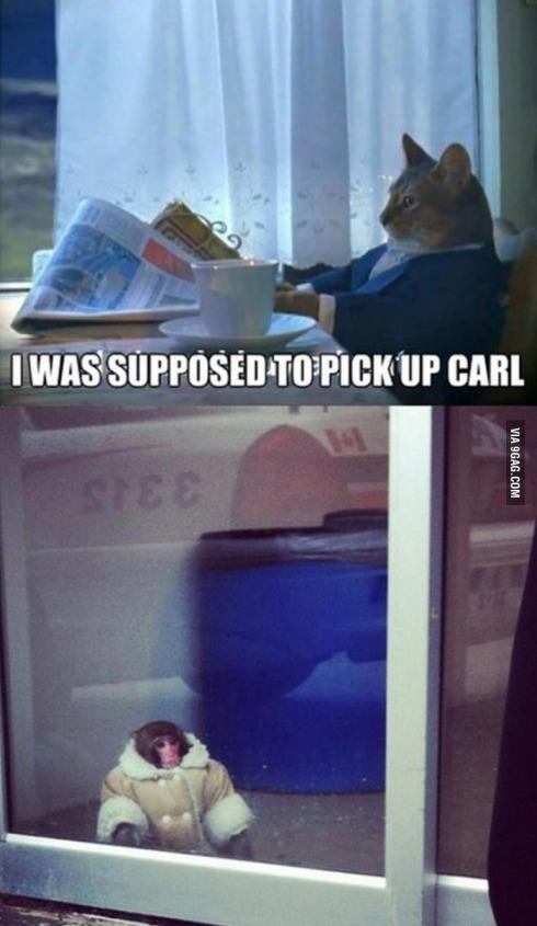 pick up carl lol