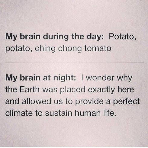 brain day and night lol