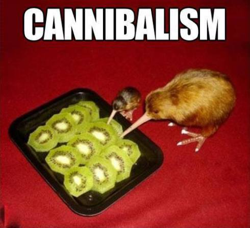 cannibalism lol