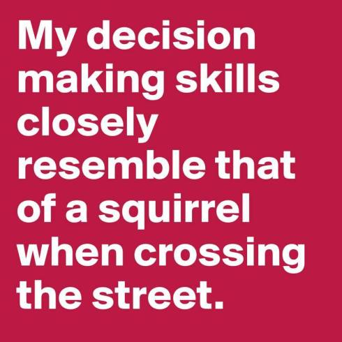 decision squirrel lol