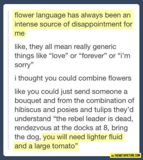 flower language lol