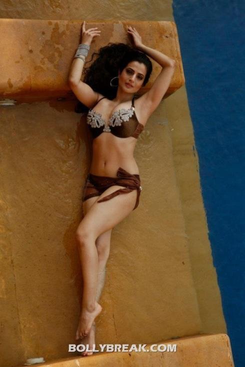 ameesha patel bikini