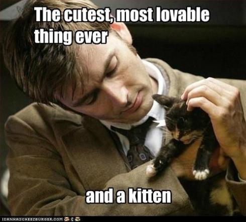 tennant and kitten