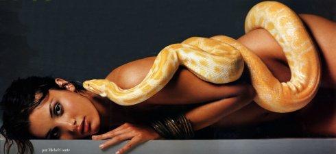 nastassja kinski albino python